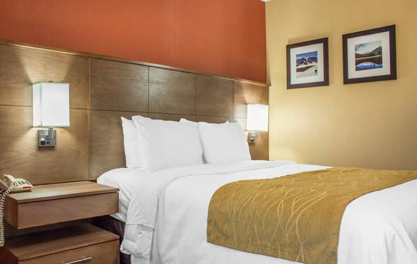 One Queen Bed in Comfort Inn Lucky Lane Flagstaff